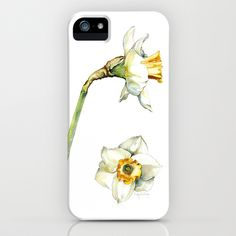 Daffodil iPhone & iPod Case by Cindy Lou Bailey  - $35.00.  A pretty white and goldenrod Daffodil, painted in watercolor on Hot Press Arches watercolor paper. #daffodil #watercolor #white #goldenrod #prints #framedprints #florals #botanicalillustration #flowers #iPhone #iPhonecase