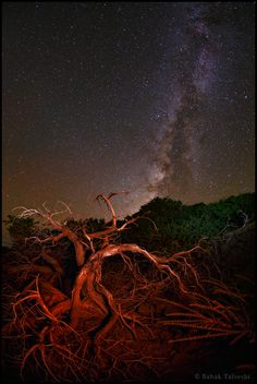 The Milky Way appears in the night sky of La Palma, Canary Islands.