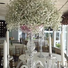 At Caroline's Flower Shoppe we treat your special occasion with care and pay attention to every detail. Having the ability to be surrounded by...