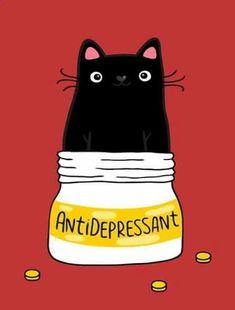 ¿Eres amante de los gatos? Visita mi blog ayudafelina.blogs...