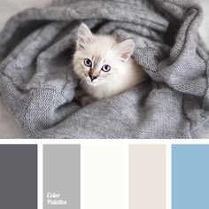 beige and blue, blue and gray, blue and white, blue and white colors, brown and blue, color combination for winter, color palette for winter, color solution for winter, gray and beige, gray and white, light blue, shades of