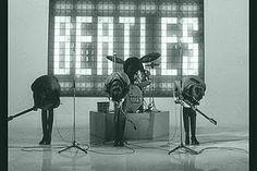 Beatle bow.