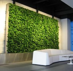 Green Wall Design Gallery Be Inspired! View our gallery of vertical garden designs and ideas to see how we can improve your environment.