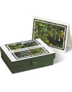 Forest Experience Stationery  $14.99