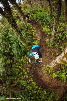 Taking A Motorcycle On Your Camping Trip Mountain Biking Uk, Mountain Bike Action, Full Face Helmets, Bike Parking, Bike Parts, Mtb Bike, Tricycle, Bike Life, More Fun