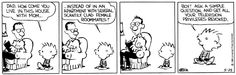 Boy! Ask a simple question and get all your television privileges revoked - Calvin & Hobbes