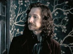 *strangled sobs*  Why Sirius Black is the best 'Harry Potter' character of all time