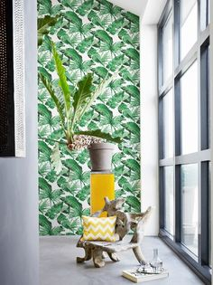 Shop - Banana Jungle Green: Botanical | Annandale Wallpapers