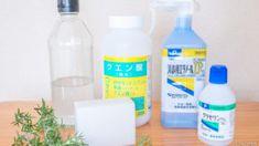 とまらない美味しさ!きゅうりのパリパリ漬け | スナログ Citric Acid, Food Design, Soap Making, Spray Bottle, Work On Yourself, Shampoo, Twitter, Airstone
