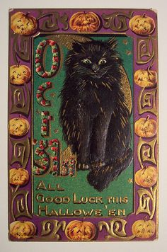 All good luck this Hallowe'en. Vintage Halloween card with black cat