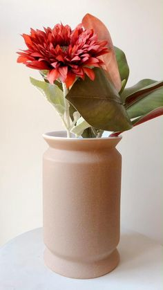 Vase Design, Decoration, Bouquets, Plants, Conkers, Tableware, Objects, Beauty, Products