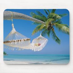 Backyard Beach, Hammock Beach, Hammocks, Peaceful Places, Beach Scenes, Beach Chairs, Beach Pictures, Postcard Size, Palm Trees