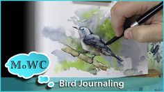 Painting a Watercolor Bird For My Journal – White Breasted Nuthatch