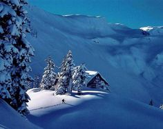 Mountain Cabin                                                                                                                                                                                 More