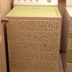 My washer after being painted