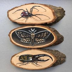 Paintings of Animals on Wood Slices