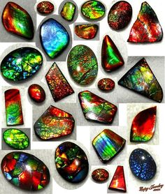 Ammolite is a beautiful gemstone that comes in many colors and styles to complement almost any skin tone. It is a gemstone create from the shell of a fossilized sea creature that existed over 65 million years ago called an ammonite.