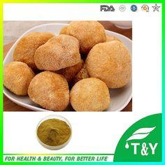 800g High purity hericium erinaceus / monkey head mushroom extract with free shipping