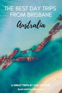 If you are looking for the best day trips from Brisbane we have shared six fantastic ideas for you to consider - all are close to Brisbane city so either jump in the car or book a day tour to one of these great destinations soon. #Australia #Queensland #Brisbane #daytrips Brisbane City, Brisbane Australia, Australia Travel, Weekend Trips, Weekend Getaways, Sand Island, Stradbroke Island, Forest And Wildlife, Animal Experiences