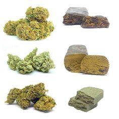 Das CBD Blüten & Pollinat (Hasch/Hash) Testpaket besteht aus 3 Sorten CBD Blüten zu je 1 Gramm und 3 verschiedene CBD Pollinate zu je 1 Gramm plus kleinen Bonus. Wir wählen nur die derzeit besten Blüten / Pollinate die Verfügbar sind (Chargen Abhängig) aus. Alle Produkte dieses Starterpaketes stammen aus biologischen Indooranbau und haben einen THC Wert von unter 0,2% , und CBD Werte zwischen 4% – 70% Berry, Gramm, Weed Strains, Random Stuff, Products, Bury