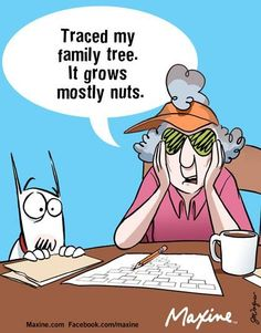 Image result for funny genealogy research