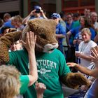 The cat on St Patrick's day during the UK pep rally March 17, 2012