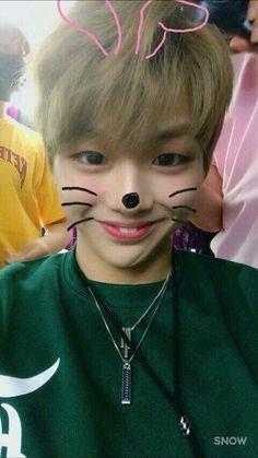 King Daniel♡ so cute Got7, Park Bo Gum, Daniel K, Jihyo Twice, Kim Jaehwan, Ha Sungwoon, Produce 101, Kim Woo Bin, Seong