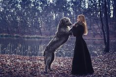 Irish Wolfhound & his princess. Almost like Huan and Luthien...