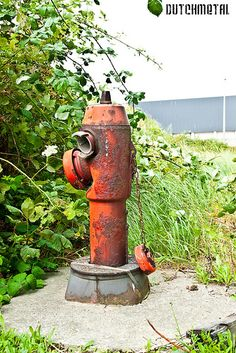 Fire Hydrant ~ click through for a little history on fire hydrants ...