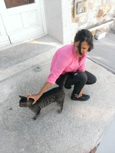Wherever cats :))