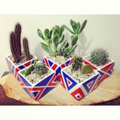 Hand made by Cactil Cactus Land