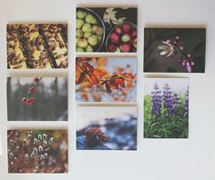 eco recycled notecards perfect for gift giving