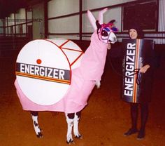 llamas in costume | ... list 1 get a llama or is that an alpaca 2 get a llama or alpaca sized