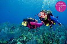 Two-Day SDI Dive Course for One ($229), Two ($439) or Three People ($639) with Extreme Watersport (Up to $2,457 Value)