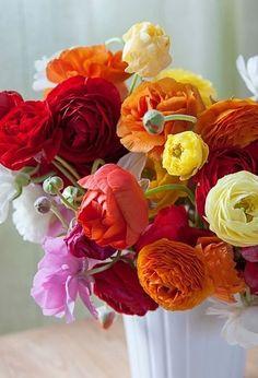 Ranunculus #Flowers #Centerpiece