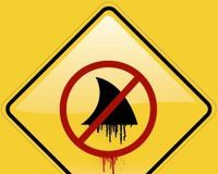 Ban Shark Fin Soup Australia Wide http://www.thepetitionsite.com/801/667/276/ban-shark-fin-soup-australia-wide/?cid=FB_TAF_CIT# @sea Shepherd Conservation Society #defendconserveprotect
