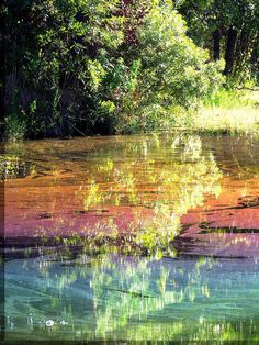 ✯ Colorful Water Reflections