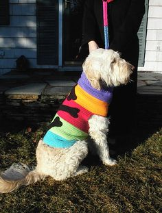 Items similar to Custom Made Crochet Dog Sweaters on Etsy Crochet Dog Sweater, Crochet Pet, Pet Coats, Dog Clothes Patterns, Cat Sweaters, Dog Items, Pet Fashion, Puppy Clothes, Dog Wear