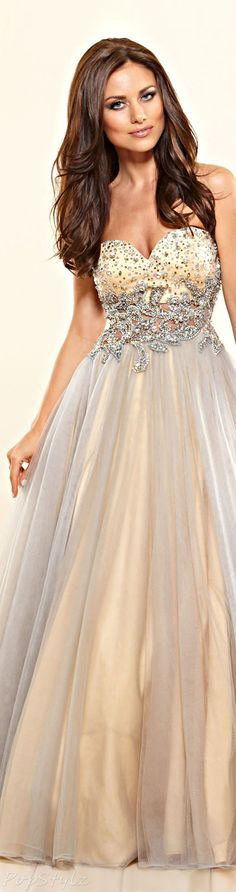 Terani Couture Stunning Evening Gown