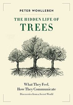 The Hidden Life of Trees: What They Feel, How They Communicate—Discoveries From a Secret World by Peter Wohlleben