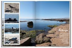 Tipps und Tricks für das perfekte Urlaubsfotobuch: http://www.fotobuchberater.de/Magazin/199/Ein-Reise-Fotobuch-gestalten---Die-besten-Tipps-fuer-beeindruckende-Urlaubsfotobuecher.html