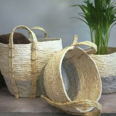 Buy Set of Three Grey and White Seagrass Baskets Seagrass Storage Baskets, Aga, Grey And White, Indoor, Pretty, Stuff To Buy, Home Decor, Homemade Home Decor, Interior