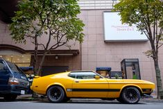 1971 Ford Mustang, Mustang Mach 1, Mustang Cars, Car Ford, Shelby Mustang, Vintage Mustang, Yellow Car, Ford Motor Company, American Muscle Cars
