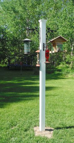 Bird Feeder Baffler 4x4 Post With A 36 Quot Stove Pipe Cut A
