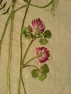 "Details of red clover flowers from the ""Cornfield flowers"" project"