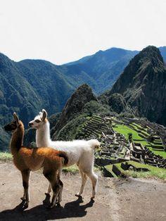 """Machu Picchu (""""Old Peak"""") is a pre-Columbian 15th-century Inca site located 2,430 metres (7,970 ft) above sea level. Machu Picchu is located in the Cusco Region of Peru, South America."""
