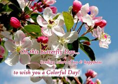 Let a colorful butterfly be a harbinger of colors of joy and happiness to your day! #Flowers #HappyButterflyDay