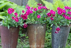 How to make GORGEOUS garden containers - 3 easy keys plus ideas for creative, repurposed containers. #gardeningtips #creativecontainers #spon
