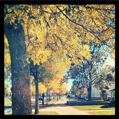 Hints of fall on campus! Share your fall photos with #GVFall and we'll feature some each week. #gvsu
