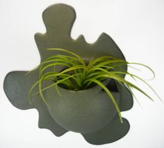 Wall Planter...Its a bubble in a puddle!